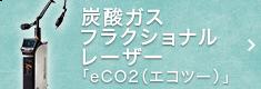 炭酸ガスフラクショナルレーザー「eCO2(エコツー)」